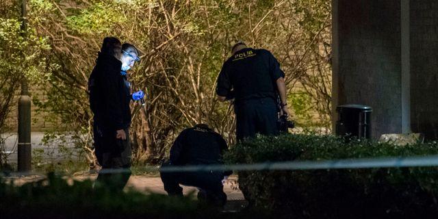 Mordet inträffade den 4 september ifjol. Johan Nilsson/TT / TT NYHETSBYRÅN