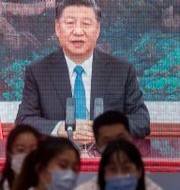 President Xi Jinping. Mark Schiefelbein / TT NYHETSBYRÅN