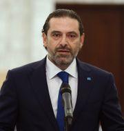 Saad Hariri. Dalati Nohra / TT NYHETSBYRÅN