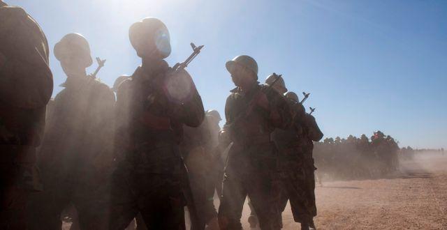 Arkivbild, soldater från Polisario. Arturo Rodriguez / TT NYHETSBYRÅN