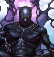 Black Panther. TT NYHETSBYRÅN