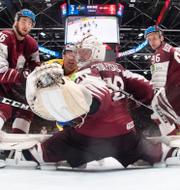 Patric Hörnqvist gör mål mot Lettland under hockey-VM 2019/Fredrik Malm. Bildbyrån/TT