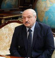 Aleksandr Lukasjenko Nikolai Petrov / TT NYHETSBYRÅN