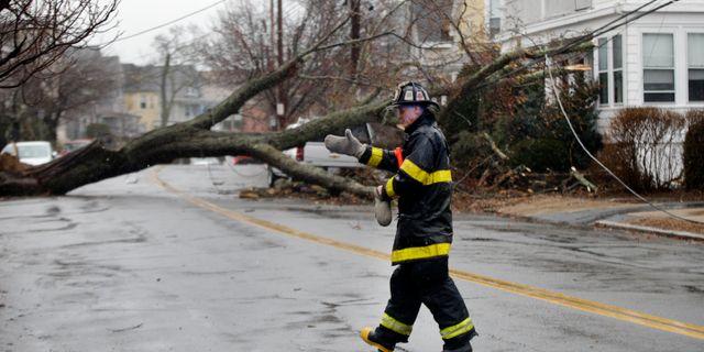Ett träd har fallit mot hus i Swamscott i Massachusetts. Elise Amendola / TT / NTB Scanpix