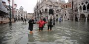Markusplatsen i Venedig.  Luca Bruno / TT NYHETSBYRÅN