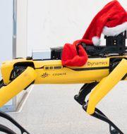 Boston Dynamics-roboten Spot Berit Roald / TT NYHETSBYRÅN