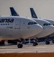 Lufthansa Michael Probst / TT NYHETSBYRÅN