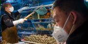En kund bär en ansiktsmask när han handlar på en skaldjursmarknad i Peking i veckan. Mark Schiefelbein / TT NYHETSBYRÅN