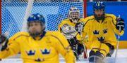 Tre kronor vid Paralympics i Pyeongchang. Joel Marklund for OIS/IOC / TT NYHETSBYRÅN/ NTB Scanpix