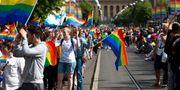 Paraden under Pridefestivalet i Göteborg 2016. Thomas Johansson/TT / TT NYHETSBYRÅN