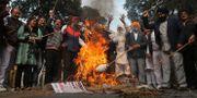 Demonstranter bränner docka av Sajjan Kumar. TT NYHETSBYRÅN