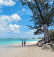 Philip Botström, David Ling och Caymanöarna (arkivbilder). TT