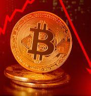 Bitcoin faller. Shutterstock