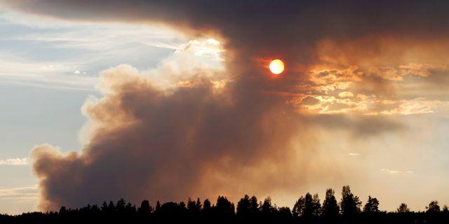 Röken stiger från skogsbränderna i Ljusdals kommun. Mats Andersson/TT / TT NYHETSBYRÅN
