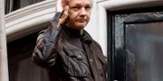 Julian Assange. Frank Augstein/AP/TT