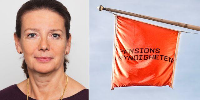Elisabeth Rynning / Arkivbild Pernille Tofte, JO / TT