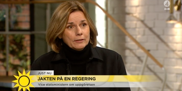 Isabella Lövin (MP). TV4