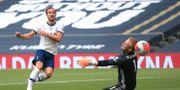 Tottenhams Kane gör mål på Leicesters Schmeichel Adam Davy / TT NYHETSBYRÅN