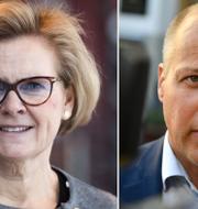 Riksåklagare Petra Lundh ska utreda skärpt lagstiftning för kvinnofridsbrott på uppdrag av Morgan Johansson och regeringen.  TT