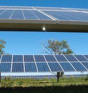Illustrationsbild. Solenergi i North Dakota, USA. Dave Kolpack / TT NYHETSBYRÅN