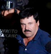 """Joaquín """"El Chapo"""" Guzmán. Tomas Bravo / TT NYHETSBYRÅN"""