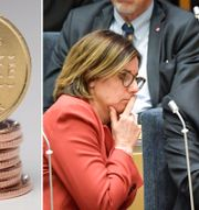 Arkivbilder: Svenska kronor, vice statsminister Isabella Lövin, statsminister Stefan Löfven. TT