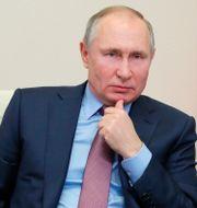 Rysslands president Vladimir Putin.  Mikhail Klimentyev / TT NYHETSBYRÅN