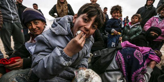 Syrienkritiker skjutna
