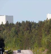 Forsmark kärnkraftverk. Arkivbild. FREDRIK SANDBERG / TT / TT NYHETSBYRÅN