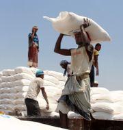 Matförsändelse från FN delas ut i Jemen. Hammadi Issa / TT NYHETSBYRÅN
