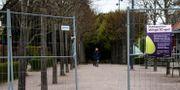 Stadsparken i Lund var stängd under årets valborg. Johan Nilsson/TT / TT NYHETSBYRÅN