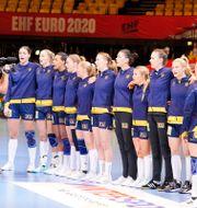 Det svenska handbollslandslaget inför en match i EM i vintras Henning Bagger / TT NYHETSBYRÅN