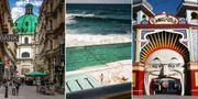 """Wien, Sydney och Melbourne ligger i topp på listan över världens mest """"bobara"""" städer.  Pexels/Australia Tourism/Eric Fredericks"""