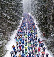 Vasaloppet ULF PALM / TT / TT NYHETSBYRÅN