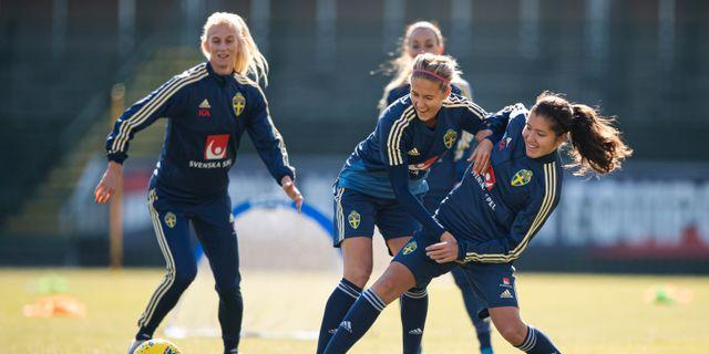 Sverige tränar inför matchen. JOEL MARKLUND / BILDBYRÅN