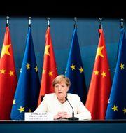 Angela Merkel  Sandra Steins / TT NYHETSBYRÅN