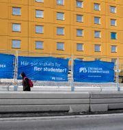 Studentbostäder under uppbyggnad i Huvudsta. Janerik Henriksson/TT / TT NYHETSBYRÅN