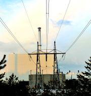Forsmark kärnkraftsverk. Tomas Oneborg / SvD / TT / TT NYHETSBYRÅN