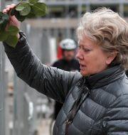 En kvinna lämnar en ros efter terrorattacken på Drottninggatan.  Markus Schreiber / TT NYHETSBYRÅN