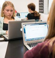 Elever i ett klassrum. Alexander Olivera/TT / TT NYHETSBYRÅN