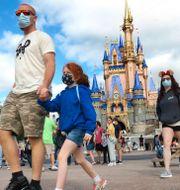 Besökare på Disney World. Joe Burbank / TT NYHETSBYRÅN
