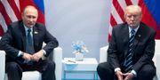 Vladimir Putin/Donald Trump. Marcellus Stein / TT / NTB Scanpix