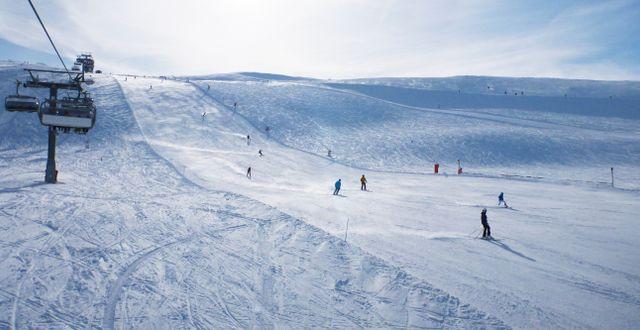 Arkivbild: Skistars anläggning i norska Trysil.  Johansen, Erik / TT NYHETSBYRÅN