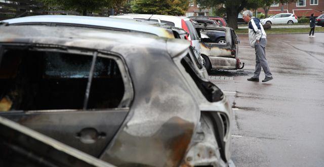 Nedbrända bilar i Göteborg Adam Ihse/TT / TT NYHETSBYRÅN