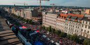 Demonstrationerna fyllde gatorna i Prag MICHAL CIZEK / AFP