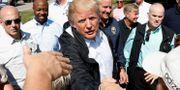 Donald Trump besökte under onsdagen delstaterna som drabbats av orkanen Florence. KEVIN LAMARQUE / TT NYHETSBYRÅN