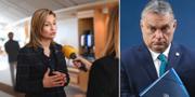 Ebba Busch och Viktor Orbán.  TT
