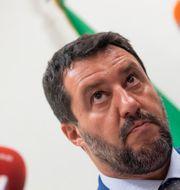 Matteo Salvini. Claudio Peri / TT NYHETSBYRÅN