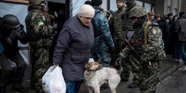 Bildt jag har redan gratulerat porosjenko