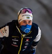 Ebba Andersson under en träning med längdlandslaget i Torsby/Arkivbild. FREDRIK KARLSSON / BILDBYRÅN